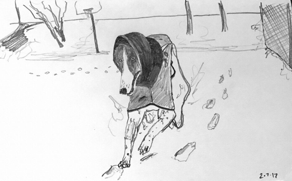 sketch of greyhound dog running in snow on basketball court